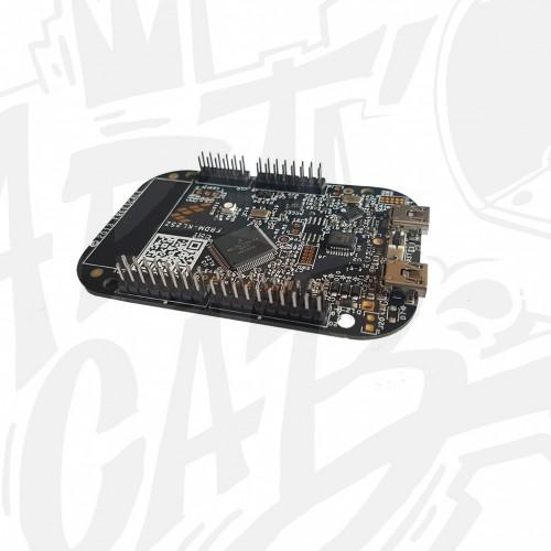 Interface USB Freescale FRDM KL25Z pré-configurée